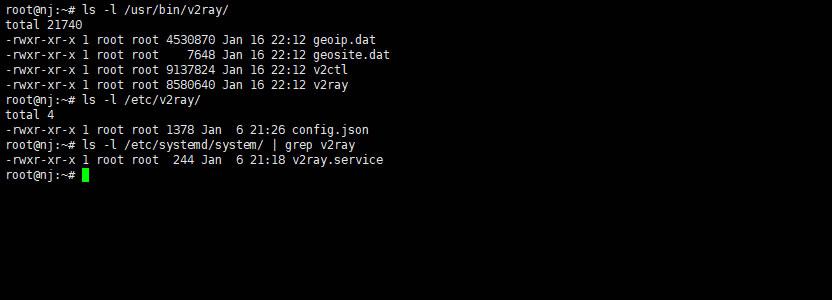 开启v2ray代理服务器详细使用教程| RULTR